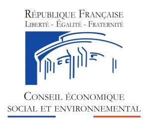 Conseil Economique Social et Envoirmental